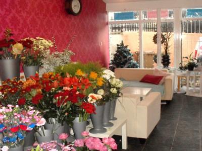Lily Lovedays shop interior 2