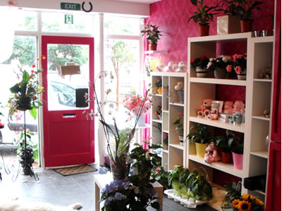 Lily Lovedays shop interior 4