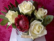 rose Four