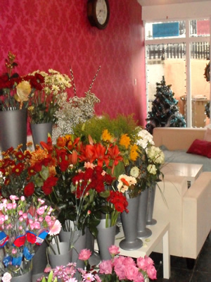 Lily Lovedays Shop Interior